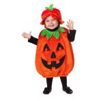 Baby Costume Pumpkin Patch Cutie Age 12 - 24 Months