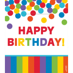 8 Party Bags Birthday Accessories - Primary Rainbow Plastic 24.1 x 20.3 cm