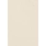 Table Cover Plastic Vanilla Creme 137 x 274 cm