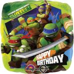 Standard Teenage Mutant Ninja Turtles Birthday Foil Balloon S60 Packaged 43 cm