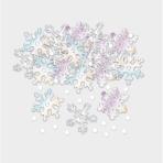 Confetti Snowflakes Iridescent Foil 14 g