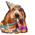 "SuperShape ""Avanti Basset Hound Birthday"" Foil Balloon  , P38, packed, 55 x 63cm"