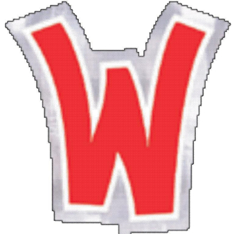 48 Stickers Letter W