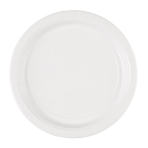 20 Plates Frosty White Paper Round 22.8 cm