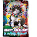 "Junior Shape ""Avanti HBD Party Animal"" Foil Balloon  , S60, packed, 30 x 43cm"