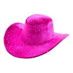 Cowboy Hat Pink Lady Fabric One Size