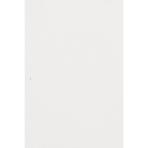 Tableroll Frosty White Plastic 30.4 x 1 m
