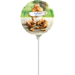 "9'' ""Avanti Thank You Chipmunk"" Foil Balloon Round , A20, airfilled, 23cm"