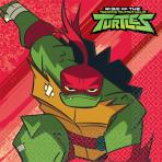 16 Napkins Rise Of The Teenage Mutant Ninja Turtles 33 x 33 cm