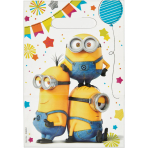 6 Loot Bags Despicable Me