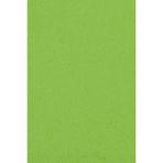 Tablecover Kiwi Plastic 137 x 274 cm
